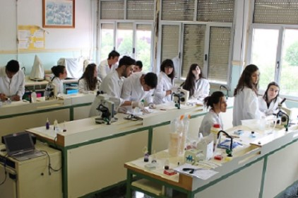 Laboratorio Bach1